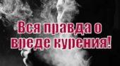 Вся правда о вреде курения! Профессор Жданов / смотреть онлайн