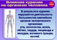 Вредные привычки и здоровье человека, влияние на здоровье, профилактика курения