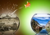 3 признака того, что близятся перемены к лучшему